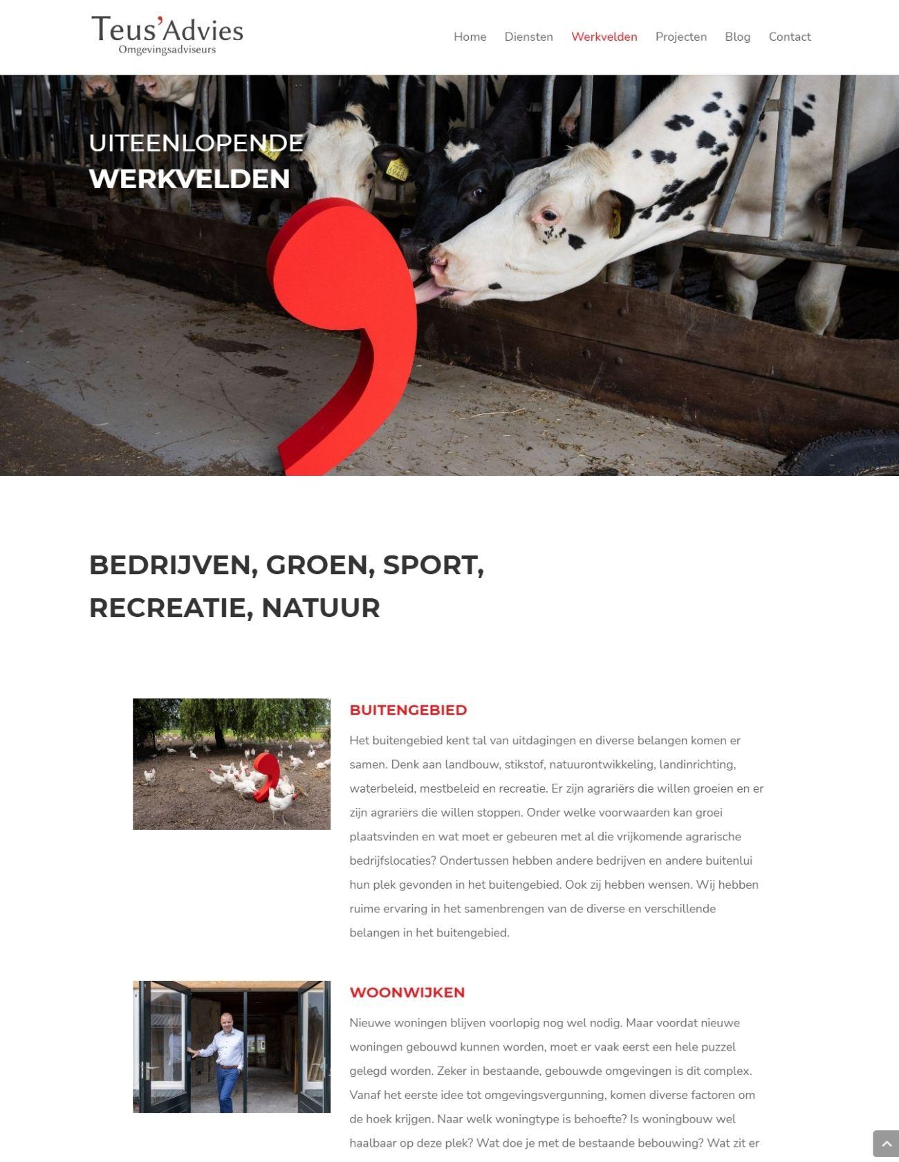 Werkvelden pagina website Teus' Advies